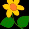 Sprzedam młode agamy brodate - ostatni post przez kwiatuszek1309
